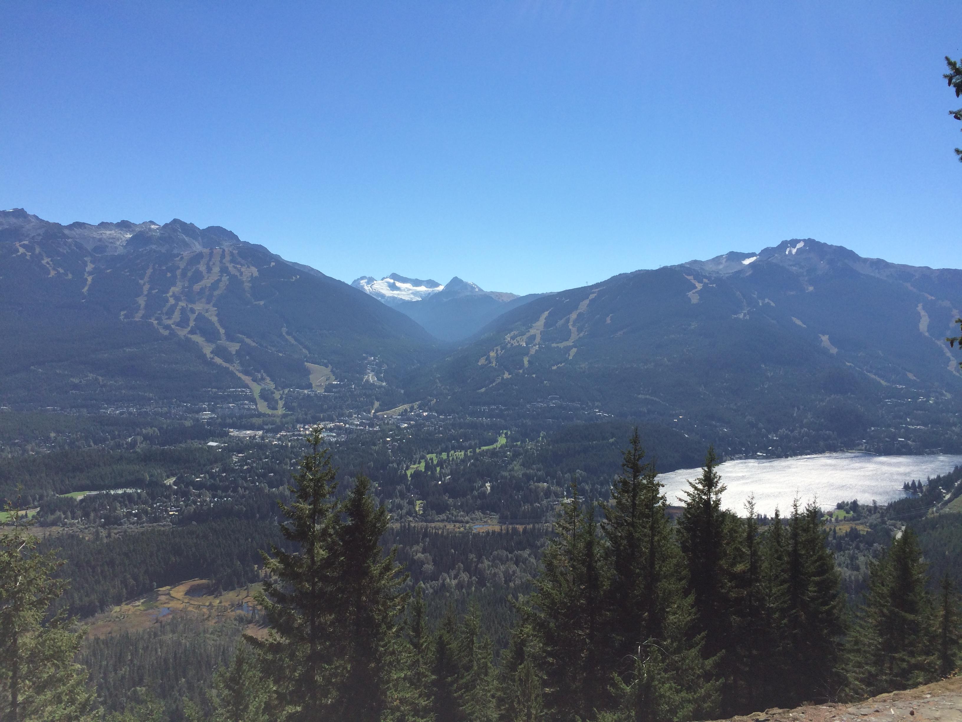 Whistler View